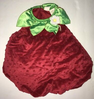 Plush STRAWBERRY PADDED VEST~HALLOWEEN COSTUME~Infant 12-18 M