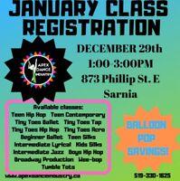 Professional Dance & Circus Instruction