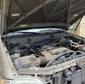 Professional Car Detailer