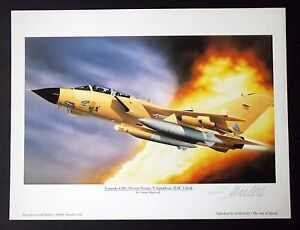 Aviation-Art-TORNADO-GR-1-Gulf-War-Artist-Signed-Limited-Edition