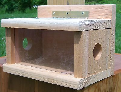 Songbird Essentials Post Mount Bluebird Hopper Bird Feeder