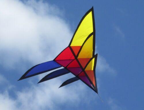 87 inch HQ Triangulation Kite by Joel Scholz 106060