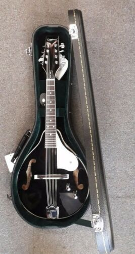 Tanglewood TWMT-BKP-E electro acoustic mandolin, gloss black, with hardcase, NEW
