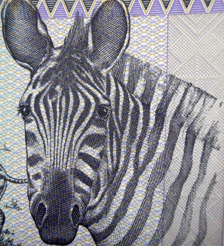 ZEBRA on MONEY 1989 RWANDA 100 FRANCS BANKNOTE RWANDAN CIVIL WAR CURRENCY Mint