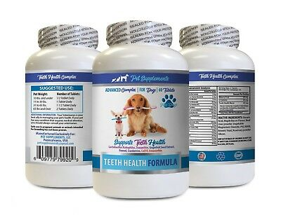 dog teeth clean treats - DOG TEETH HEALTH FORMULA 1B - dog vitamin b complex