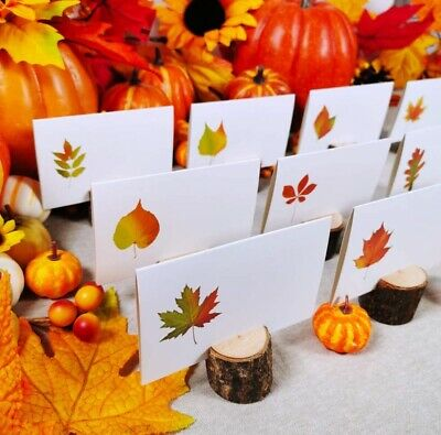 120 Pcs Fall Leaves Place Cards Colorful Wedding Table Cards Party . X