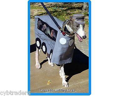 Funny Greyhound Dog Costume Refrigerator / Tool Box Magnet Gift Card Insert