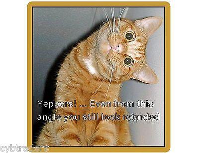Funny Cat Tabby Retarded  Refrigerator / File Cabinet Magnet