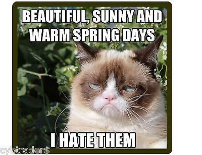 Funny Grumpy Cat Hates Warm Spring Days  Refrigerator / Locker  Magnet