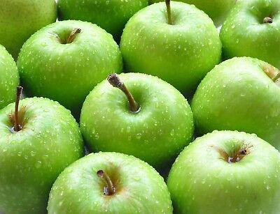Green Apple Perfume Oil Roll On Fragrance Bottle 10 ml Crisp Sweet Fruity Oil Green Apple Perfume