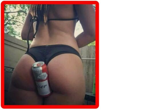 Funny Sexy Budweiser Beer Can Holder Refrigerator  Tool Box / Kegerator Magnet