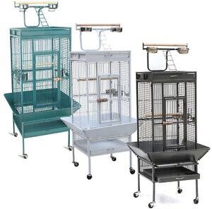 Looking for Parrot Cage