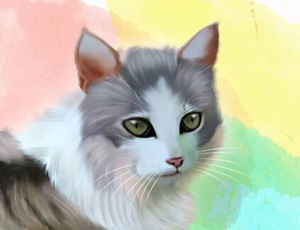 I Will Draw Realistic Portrait Of Your Cat , Dog Or Any Pet