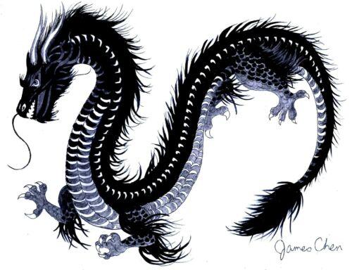 CHINESE BLACK DRAGON ORIGINAL HAND DRAWN FINE COLOR ART BY ARTIST JAMES CHEN