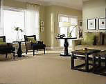 CARPET CLEANING, CARPET SHAMPOO & STEAM AT LOWEST PRICE