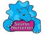 Early Years Educators Apprentice -Littlesaurus Nursery
