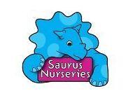 Qualified Early Years Educator -Littlesaurus Nursery
