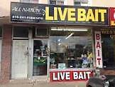 live bait FISHING & HUNTING LICENCE
