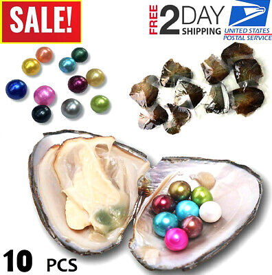 10 Individually Akoya Oysters With Pearls Inside Freshwater