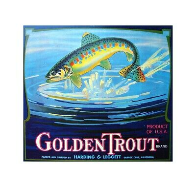 US Seller- Golden Trout Brand fruit crate label poster home decor - Fruit Decoration Ideas