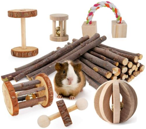 JanYoo Guinea Pig Toys Chinchilla Hamster Roller Rat Chews Toys (Pack of 7)