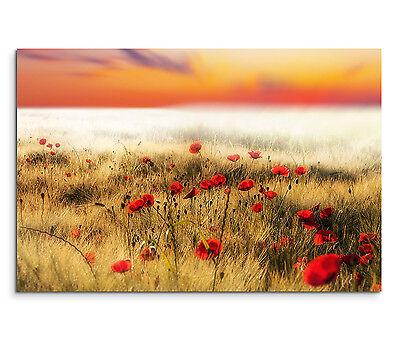 Leinwandbild 120x80cm auf Keilrahmen Mohnblumen,Feld,Blume,rot,orange