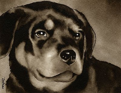 ROTTWEILER PUPPY note cards by watercolor artist DJ Rogers