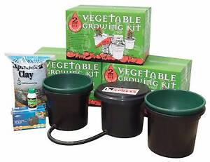 2 POT VEGETABLE GROWING KIT AVAILABLE Canning Vale Canning Area Preview