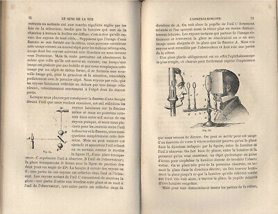 SCIENCE PHYSIOLOGY JULIUS BERNSTEIN SENSES NERVOUS SYSTEM FRENCH 1876