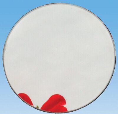 Eisco Labs Concave Glass Mirror 10cm Dia. 10cm Focal Length