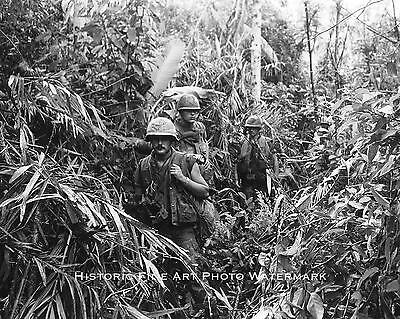 VIETNAM WAR PHOTO US MARINES 1/3 JUNGLE PATROL 1969 8x10 #21967