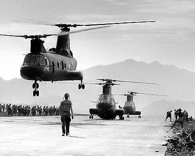 VIETNAM WAR PHOTO US MARINES KHE SANH JUNGLE PATROL 1968 8x10 #21978