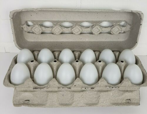 Blank Hollow White Plastic Easter Eggs 2.25 Inches Paintable Set of 12