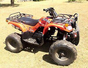 Quad Bike Elstar Tank 250cc Maraylya The Hills District Preview