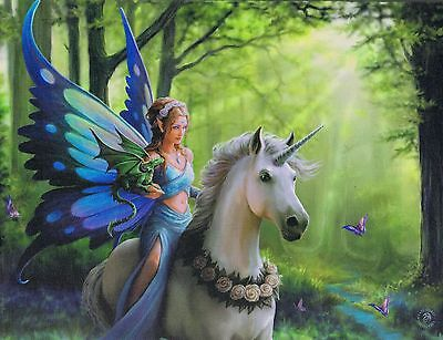 NEW Unicorn & Fairy Picture Realm of Enchantment by Anne Stokes 25 cm x 19 cm