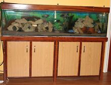 6 Foot Fish Tank / Aquarium, Cabinet & Light Canning Vale Canning Area Preview