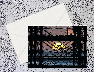 Sunset behind Aberystwyth Pier - blank birthday greetings cards
