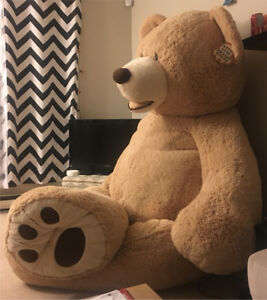 Huge bear from costco