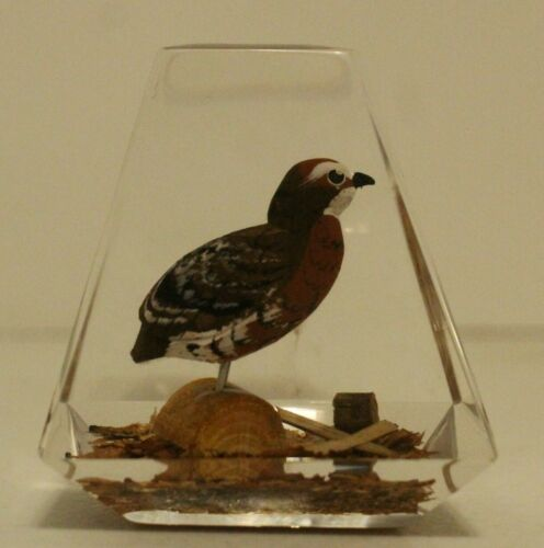 Bob White Quail Clear Lucite Hand Painted & Hand Carved Vintage