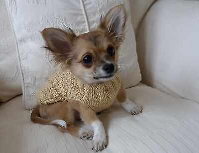"""6"""" Hand Knitted Warm Chihuahua Small Dog Puppy Teacup Cat Jumper Coat Sweater."""