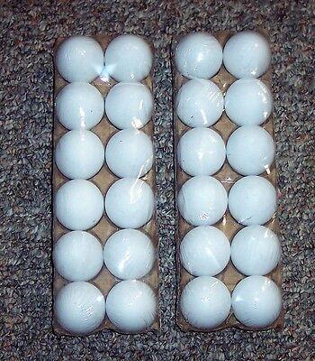 24 White Plastic Fake Faux Decorative Eggs Dyeable Markable 4 Crafts Party Favor