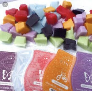 Wanted Scentsy Bars