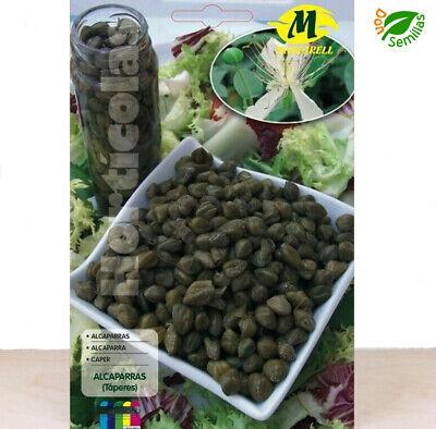 Alcaparras ( Capparis spinosa ) 0,5 gr / 50 semillas apróx. seeds...