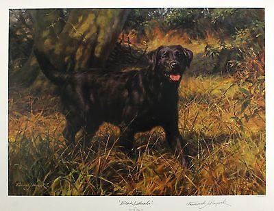 "FREDERICK HAYCOCK ""Black Labrador"" dog signed LIM ED SIZE:49cm x 63cm NEW RARE"