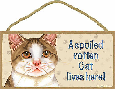 Tan and White Cat A spoiled rotten Cat lives here! Wood Kitten Sign USA Made NEW