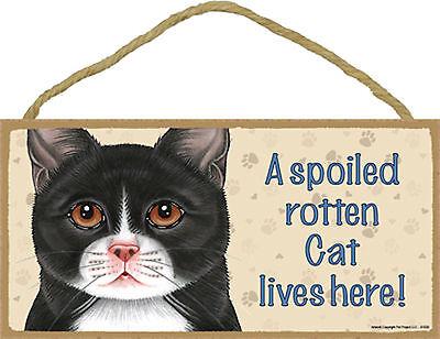 A spoiled rotten Cat lives here! Wood Tuxedo Black White Kitten Cat Sign USA