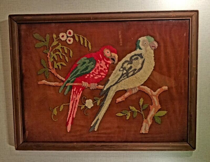 Early framed punch needle embroidery of parrots on velvet
