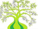 olivetreebbgstore