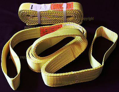 "TWO (2x) EE2-902 10ft 2 Ply Polyester Web Lifting Sling 2""x10' Lifting Tow Strap"