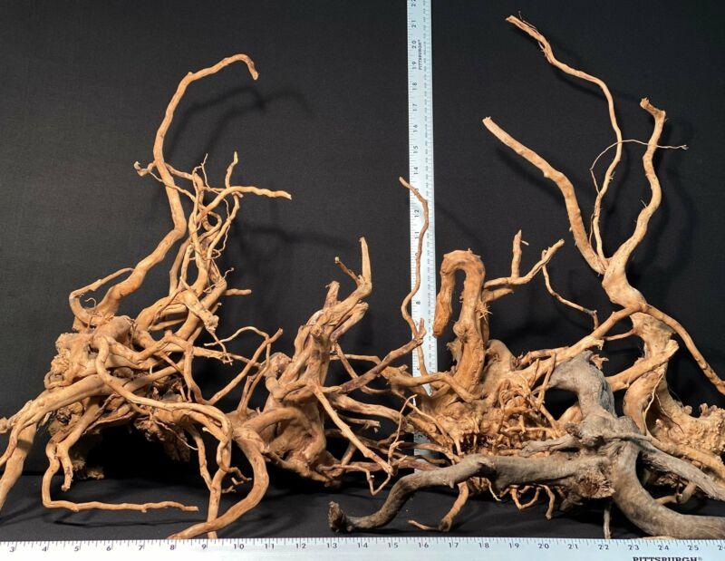 Spiderwood | 5 lb. Assorted Bulk